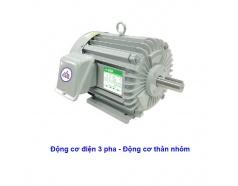 Động Cơ Điện KOTES KT-1HP-K3P KT-2HP-K3P KT-3HP-K3P KT-5HP-K3P