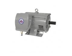 Động cơ điện KT-3HP-T1P KOTES